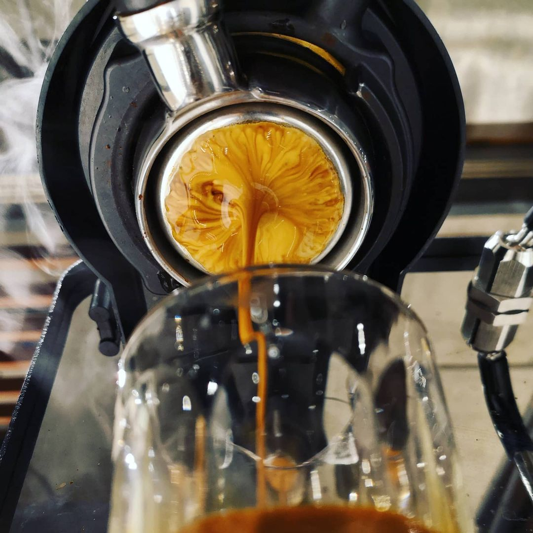 A photo taken of the underside of a portafilter as it pulls a shot of espresso.